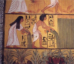 Egyptian hieroglyphs from between 1500 and 1609 BCE represented agricultural growing seasons. (Wikimedia Commons)