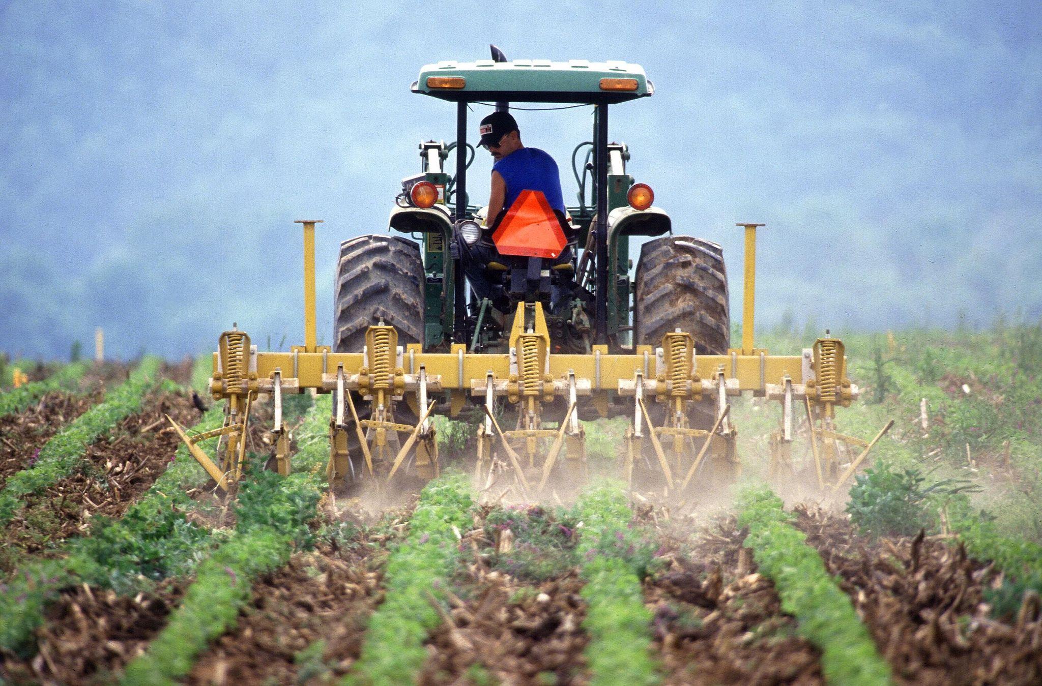Farmer_and_tractor_tilling_soil (1)