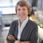 Dr. Sallie Watson Chisholm Institute Professor at Massachusetts Institute of Technology. Image Courtesy of Massachusetts Institute of Technology, The Chisholm Lab