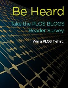 PLSO-Blogs-Survey_240x310