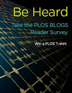 PLSO-Blogs-Survey_240x310