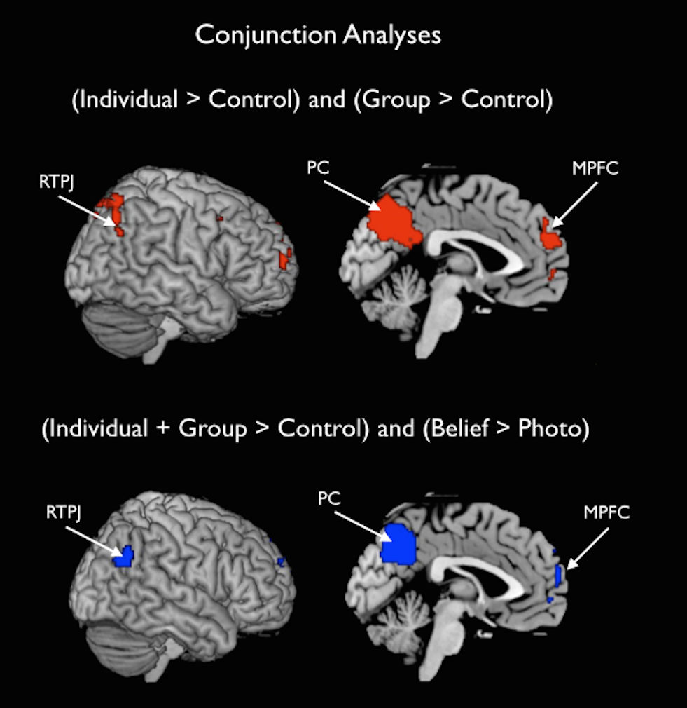 ToM in the brain. TPJ and mPFC activation when participants read about the mental states of individuals and groups. Image from Jenkins, Adrianna C., et al., PLOS ONE, 2014.