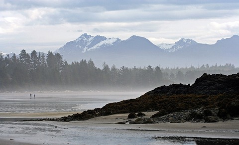 Vancouver Island Pacific Rim by backpackphotography, http://www.flickr.com/photos/backpackphotography/460766868/