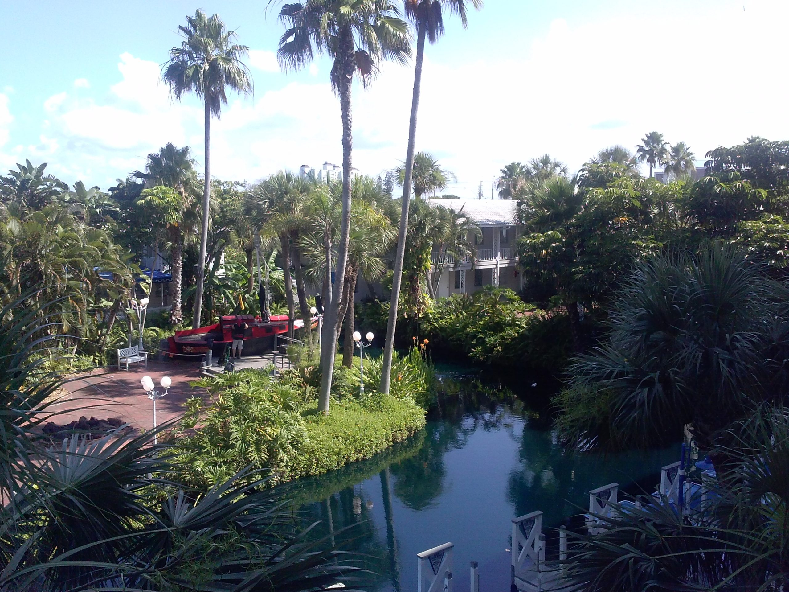 Enjoying the view from the VSS Conference in St. Pete Beach, Florida. Photo courtesy of Minjung Kim.